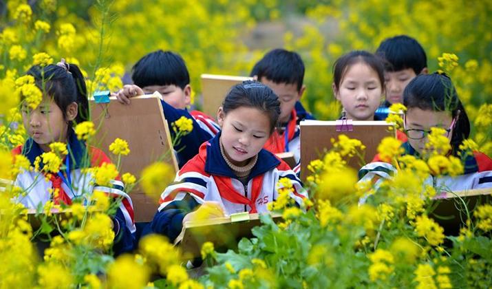 河北邯郸:画笔绘春光