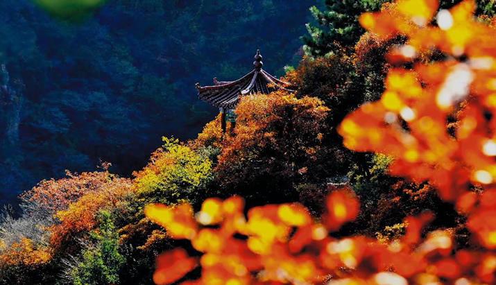 【航拍视频】太行四季歌——天桂山