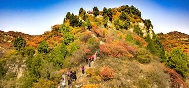 石家庄仙台山成为森林养生国家重点建设基地