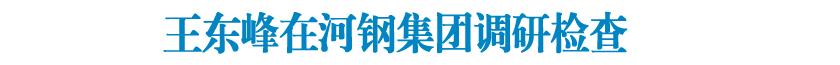 王东峰在河钢集团调研检查