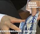 圆明园启动大规模修复文物项目 瓷器碎片达10万片!