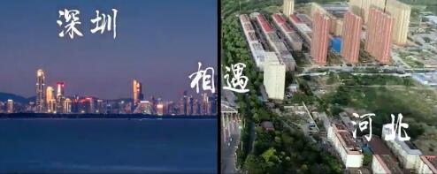 五月 当河北遇见深圳