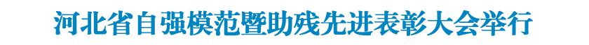 河北省自强模范暨助残先进表彰大会举行