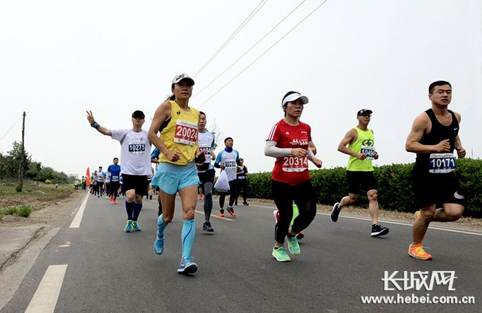 2019曹妃甸湿地国际半程马拉松在曹妃甸湿地风景区开赛