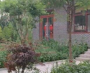 【视频】中国最美的乡村什么样?带你去看看馆陶粮画小镇