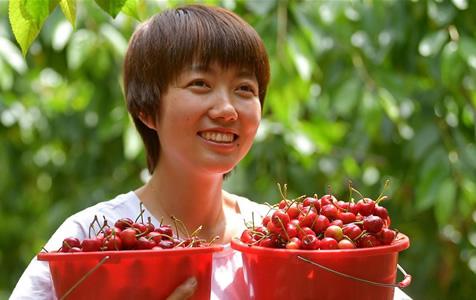 河北迁安:发展果品产业助力乡村振兴