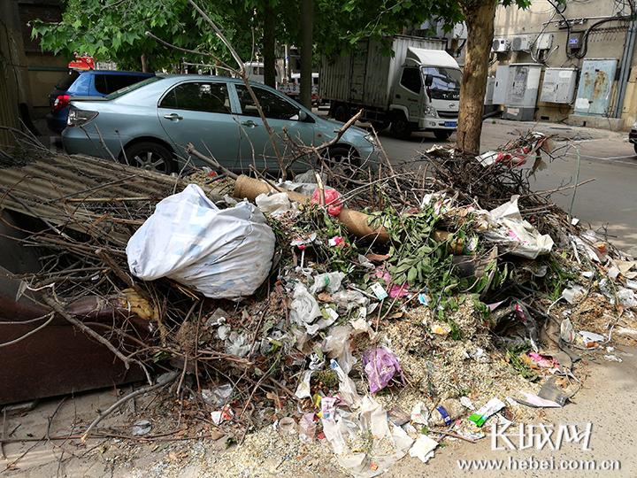 小区垃圾堆积一个月 小区物业:马上清理完毕