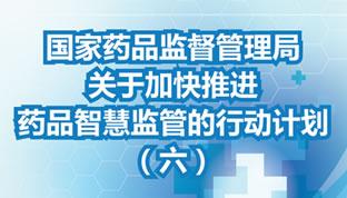 加快推进药品智慧监管的行动计划(六)