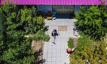 河北文安:美丽庭院扮靓乡村
