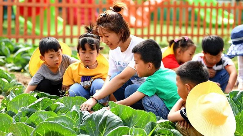 河北乐亭:农耕教育进校园