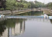 石家庄民心河污染河段已清理