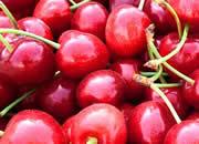 【微视频】冀果系列之樱桃|小樱桃,万元树