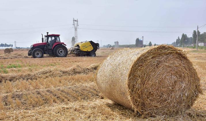 石家庄:麦秸回收 废物变金
