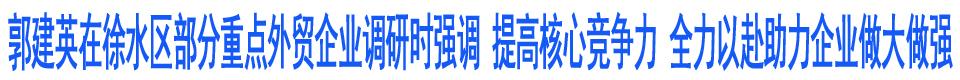 郭建英在徐水区部分重点外贸企业调研时强调 提高核心竞争力 全力以赴助力企业做大做强