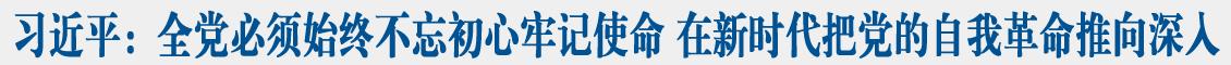 习近平在中央政治局第十五次集体学习时强调 全党必须始终不忘初心牢记使命 在新时代把党的自我革命推向深入