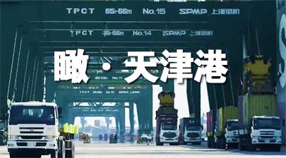天津港集裝箱碼頭,此時正是一派繁忙景象……