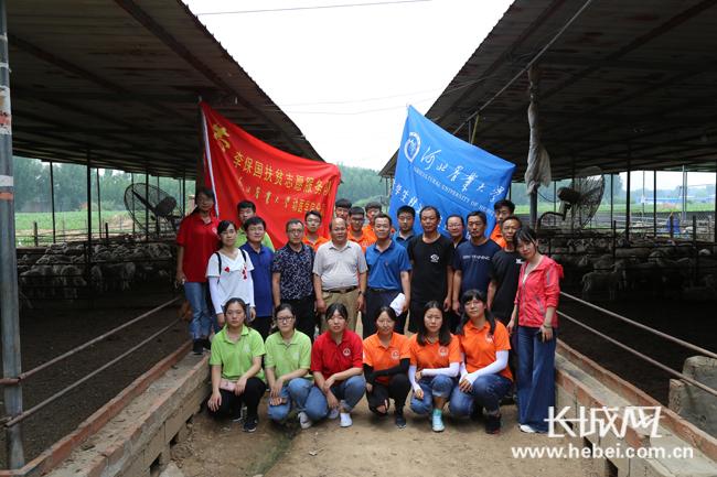 河北农业大学暑期开展羊病防治实践活动
