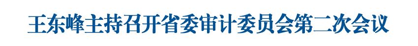 王东峰主持召开省委审计委员会第二次会议