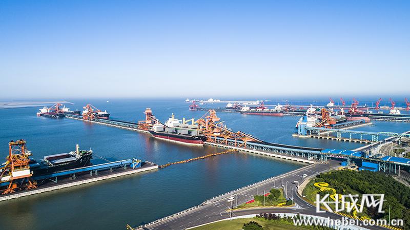 """沧州渤海新区""""三力齐发"""" 汇聚绿色发展新动能"""