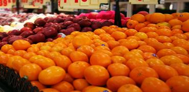 """只吃蔬果为啥体内还是""""湿气""""重"""