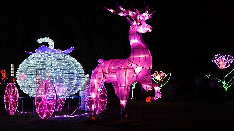张家口:梦幻夏夜灯光点亮乡村旅游 吸引众多市民观看