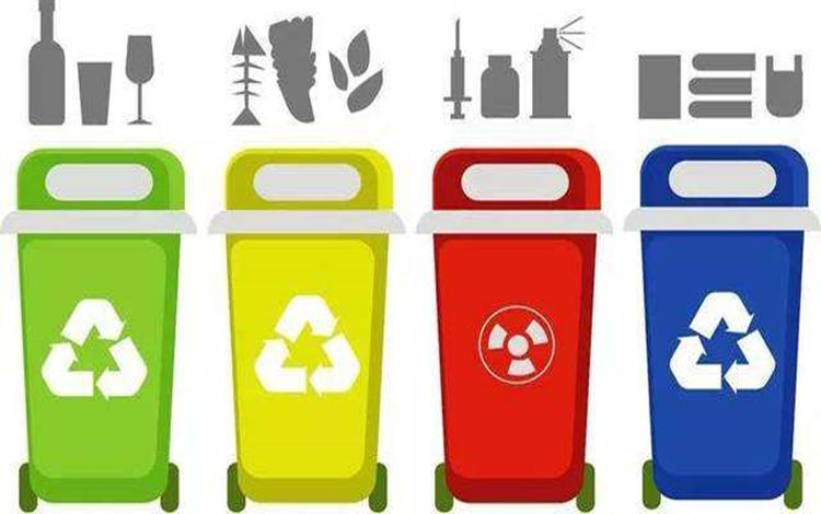 海外华侨华人恳切建言:垃圾分类可以这样办