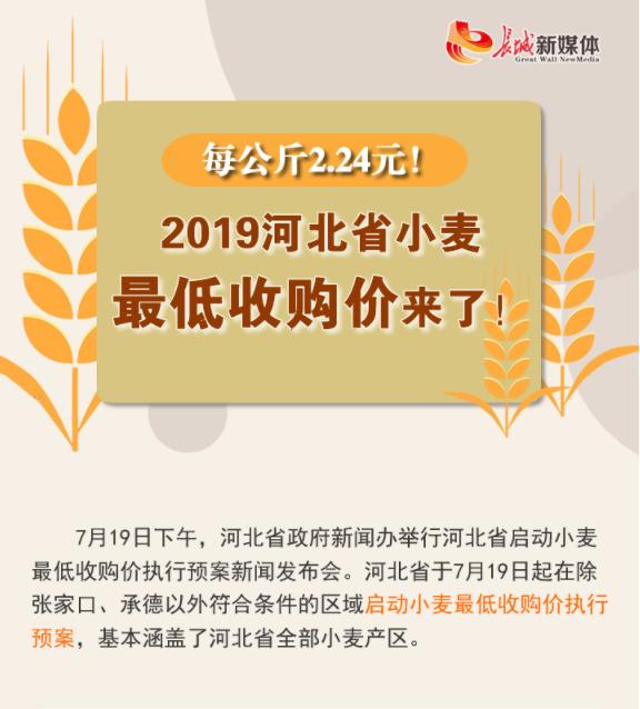 【发布会图解】每公斤2.24元!2019河北省小麦最低收购价来了