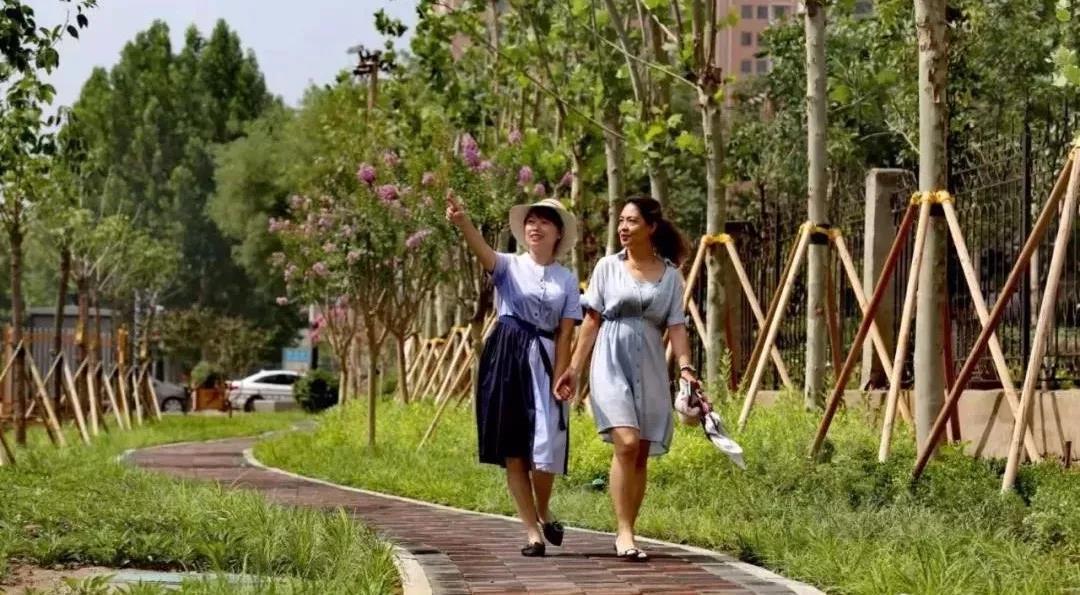 今日new衡水丨前进大街,9月见!