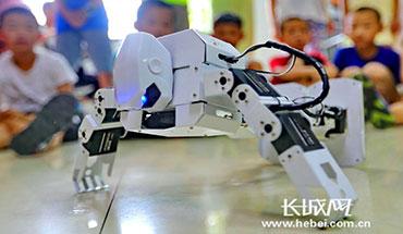 """秦皇岛:学习""""人工智能"""" 感受科技魅力"""