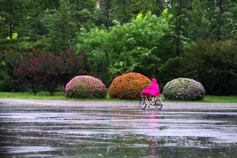 邯郸:风雨天气来袭