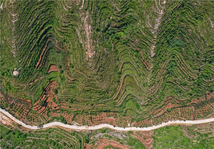 河北省邯郸市涉县山间的梯田绿意盎然美如画卷