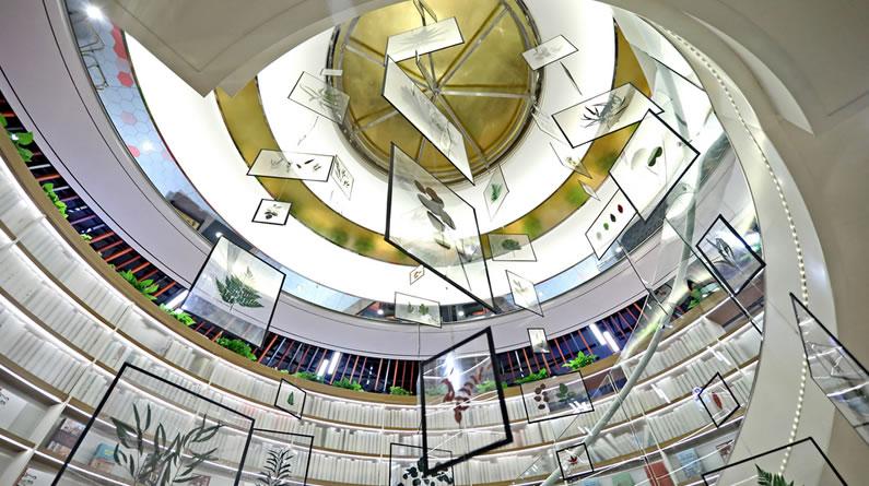 """西安:树叶标本制成3层楼高""""风铃""""引围观"""