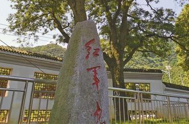 """""""红军树""""见证初心(壮丽70年 奋斗新时代·记者再走长征路)"""