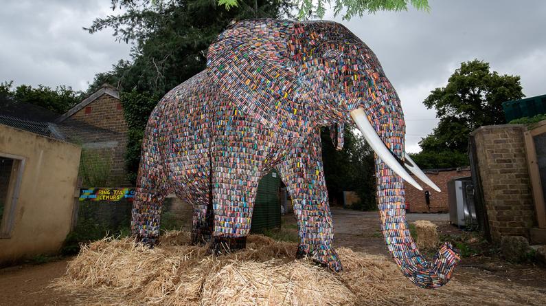 """伦敦一动物园展出""""电池大象"""" 高2.4米由1万多节旧电池制成"""