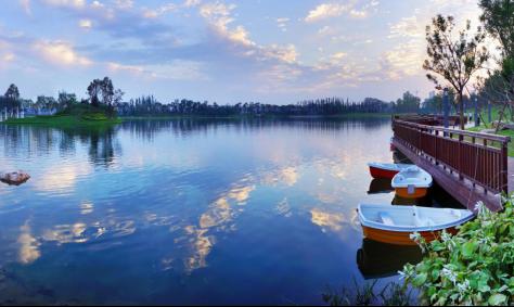 河北邯郸梦湖孔雀城丨初心不改,为美好而来