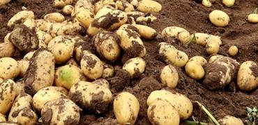 美指責我無購買農產品實際行動缺乏事實依據