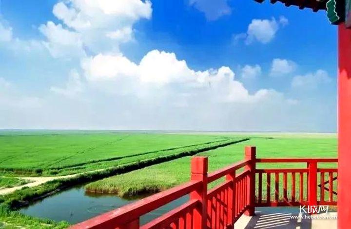 河北又多一处旅游打卡地 沧州渤海新区等你来