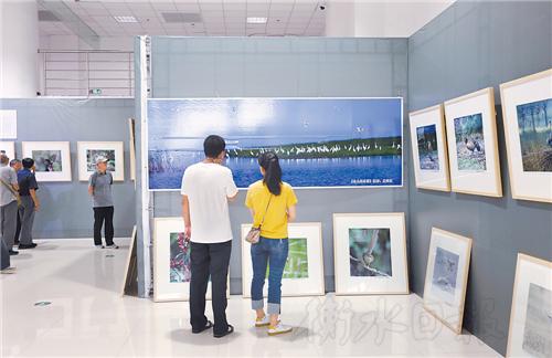 京津冀最美湿地摄影图片展在衡开展