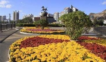 承德开展城市绿化亮化美化工程