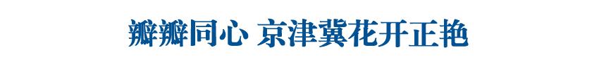 【壮丽70年 奋斗新时代】瓣瓣同心 京津冀花开正艳