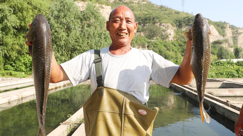 石家庄:渔民拉网捕鱼忙