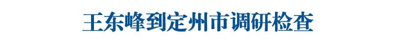 王东峰到定州市调研检查