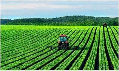 上半年农民收入增6.6% 农业农村经济稳中向好