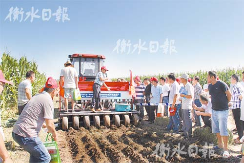 """衡水举办农机新型机械""""大阅兵""""备战三秋"""
