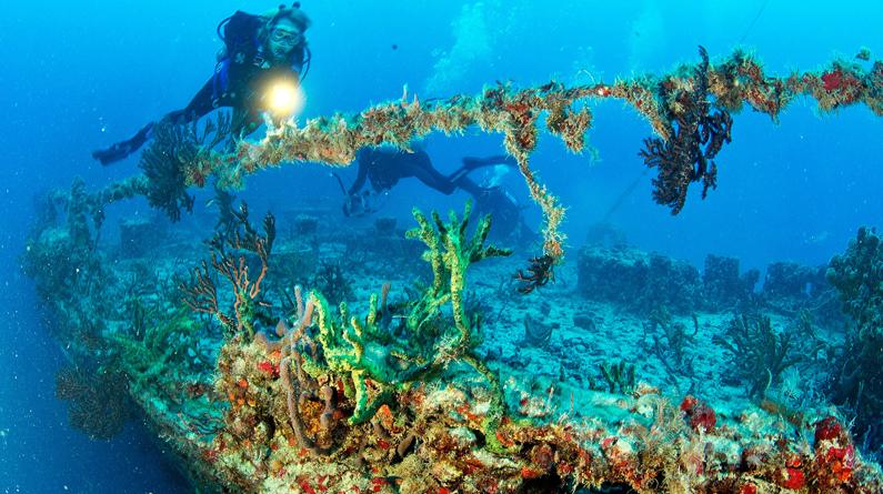 泰坦尼克号残骸开始坍塌 来看那些正被自然缓慢回收的海底遗迹