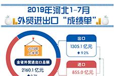 """增长9.7%!河北1-7月外贸进出口""""成绩单""""出炉"""