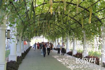 广阳首届文化旅游产业发展大会开幕