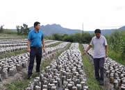 视频|有知识、懂技术、会管理,这才是当代农民该有的样子