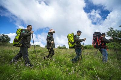湖北神农架巡护员每年徒步10万公里