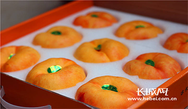 河北秦皇島:黃桃帶來最甜的日子
